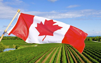 Canada launches Agri-Food Immigration Pilot